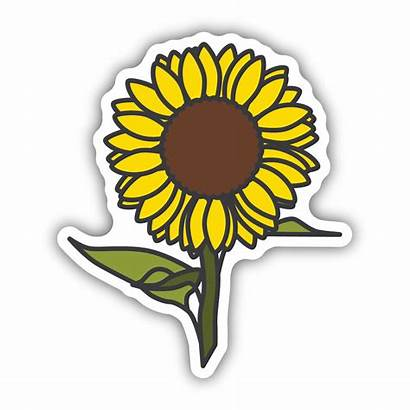 Sunflower Stickers Sticker Northwest Dickssportinggoods Flower Simple