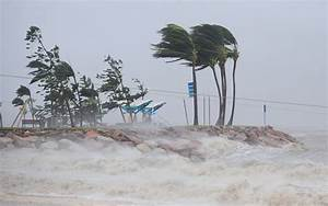 Queenslanders Survey Cyclone Yasi Damage - Zimbio