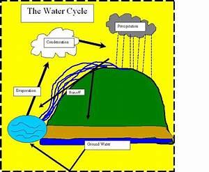 John U0026 39 S 8th Grade Blog  Diagram Of Water Cycle