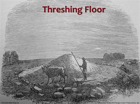 define biblical threshing floor ruth bible study