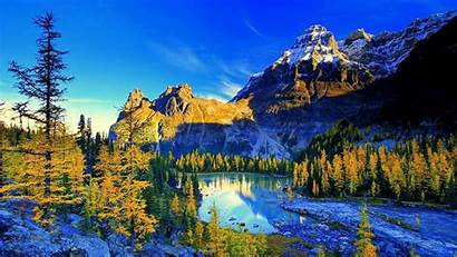 Nature Sky Mountains Under Trees Lake Leafed