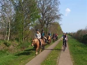 Reuter De : galerie bilder vom ponyhof reuter 2011 ponyhof reuter ~ Orissabook.com Haus und Dekorationen