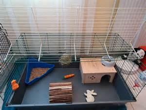 cage pour lapin nain belier la ferme de doudou