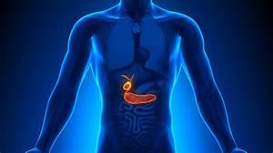 Gallbladder Problems  Know The Symptoms