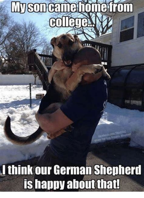 Funny German Memes - myson homerom college m i think our german shepherd is happy about that college meme on sizzle
