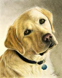 Realistic Colored Pencil Dog Drawings