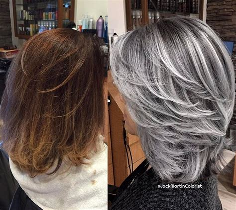 instagram analytics argento hair gray hair highlights