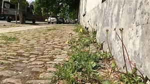 Comment Enlever Les Mauvaises Herbes : nos trottoirs envahis par les mauvaises herbes qui doit ~ Melissatoandfro.com Idées de Décoration