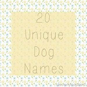 20 Unique Dog Names - Cleverly Inspired