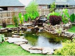 What You Need To Know About Garden Koi Ponds Backyard Fish Ponds Backyard Pond Designs Small Koi Fish Pond Tips Sweeney Feeders Fish Pond Design Ideas Backyard Fish Pond Designs