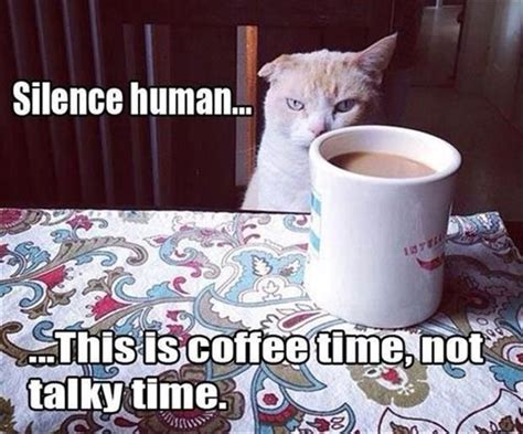 Silence Human This Is Coffee Time Oval Wood Coffee Table Canada French Truck Uptown Grey Barista Job Vacancies Company Vs American In Grinder Parts