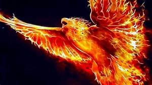 Phoenix Fractalius - Fantasy & Abstract Background ...