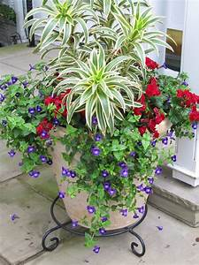 Blumen Für Steingarten : k belbepflanzung f r dachterrasse gestaltung mit pflanzen pinterest garten garten ideen ~ Markanthonyermac.com Haus und Dekorationen