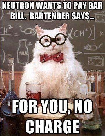 Chemistry Cat Meme 1