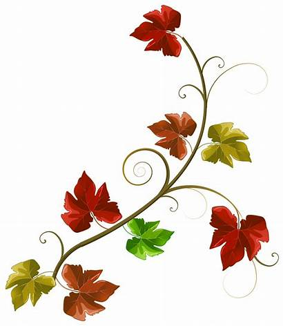 Leaves Autumn Fall Clipart Decoration Clip Decorations