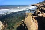 Point Loma Tide Pools, San Diego, CA - California Beaches