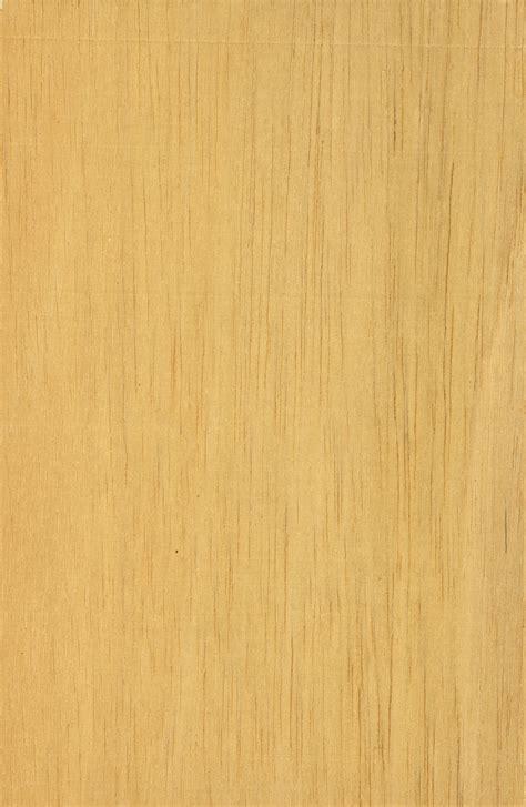 light wood texture  chainimage