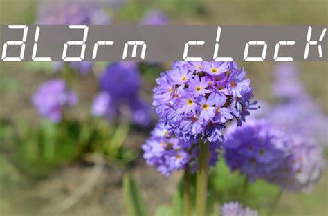 Alarm clock font subfamily identification: alarm clock Font - FFonts.net