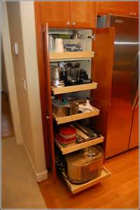 kitchen cabinet organizers pull out home design ideas