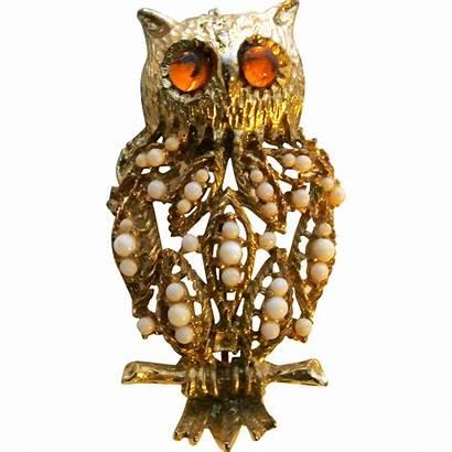 Owl Brooch Wise