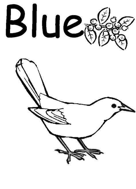 colors coloring pages for preschool search colors week 3 pinterest coloring