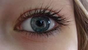 Eyes Photo  18744591