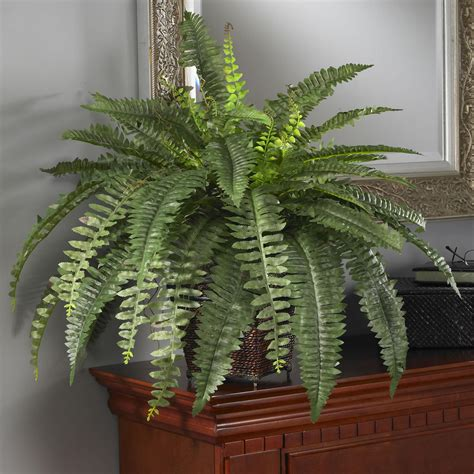 decorative ferns amazon com nearly natural 6549 boston fern with wicker decorative silk plant green home kitchen