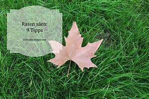 Rasen Richtig Säen : rasen s en 9 tipps f r einen sch nen rasen im garten ohne ~ A.2002-acura-tl-radio.info Haus und Dekorationen