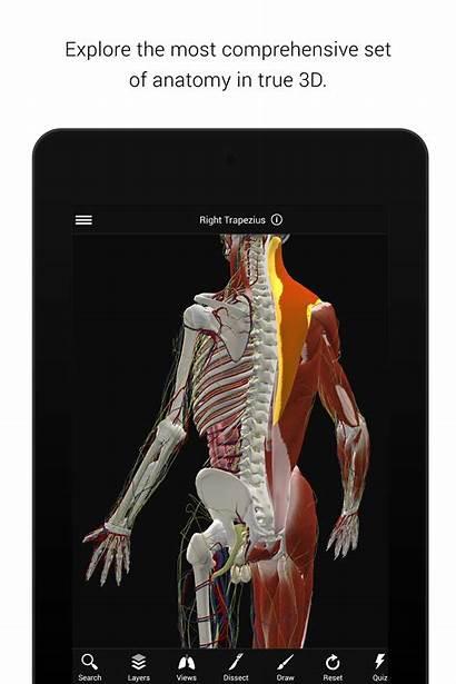 Anatomy Human 3d Biodigital Apk Android Apkpure
