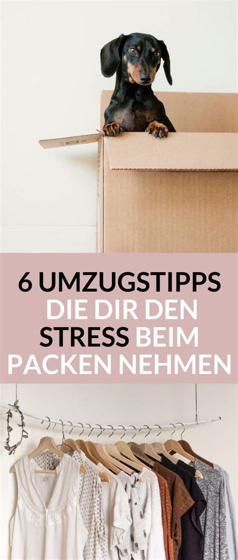 haustiere erlaubt neues gesetz 6 umzugstipps die dir den stress beim packen nehmen