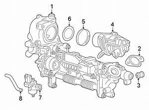 Chevrolet Cruze Egr Valve Gasket  1 6 Liter  Egr Cooler