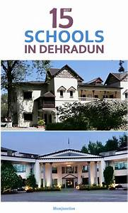 Chinese Gender Chart 2016 Due Date 15 Best And Top Schools In Dehradun City