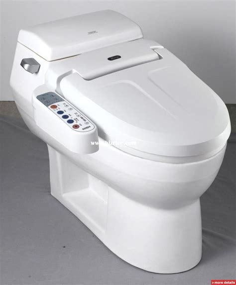 Bidet Dryer Combo by 17 Best Images About Dd Interieur Bathrooms On