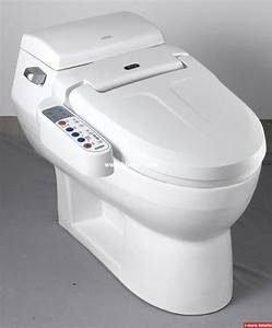 Bidet Toilette Kombination : electronic bidet toilet disabledbathroomtips learn ~ Michelbontemps.com Haus und Dekorationen