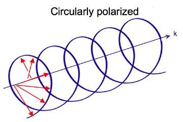 Circularly Polarized Light by Circular Dichroism