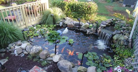 deck ponds garden water features my pond and my deck hometalk