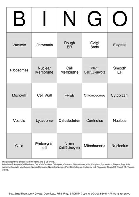 bingo cards   print  customize