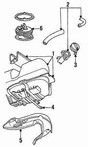 Ford Thunderbird Tank Assembly