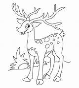 Deer Coloring Template Animal Templates Tail sketch template