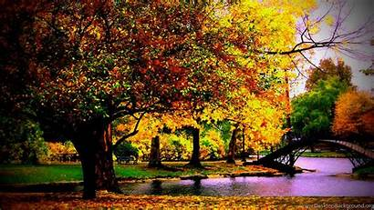 Autumn Desktop Backgrounds Definition 1000 1600 Background
