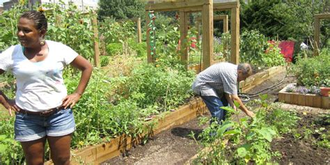 book review community gardening  social action