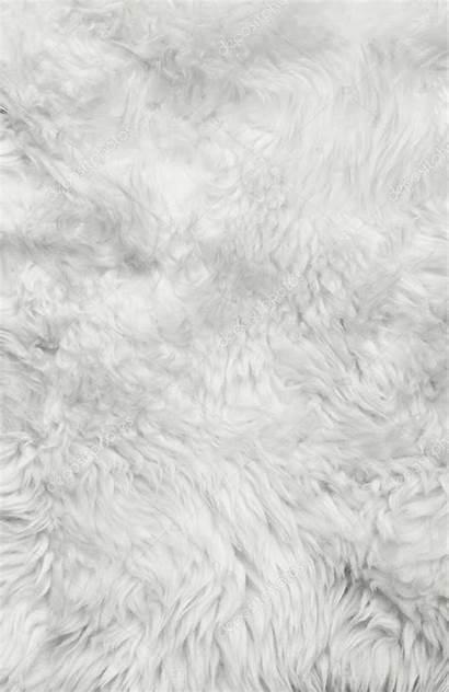 Fur Achtergrond Vacht Witte Texture Blanco Fourrure