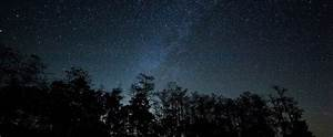 Star Party at Big Cypress National Preserve - South ...