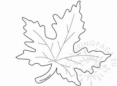 Leaf Template Maple Autumn Coloring Drawing Pumpkin