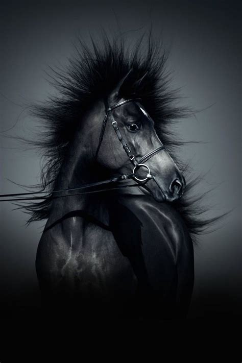 Black Lock Screen Unicorn Wallpaper by 42 Wallpaper For Iphone On Wallpapersafari