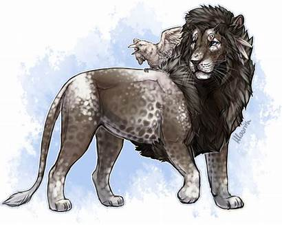 Lioden Deviantart Hlaorith Decoris Cat Lion Fantasy