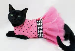 cat clothing cat dress cat clothes pink and black polka by