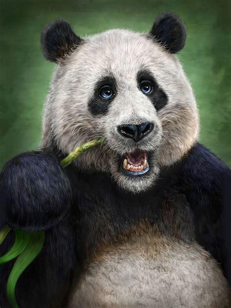 panda totem  patrick lamontagne decalgirl
