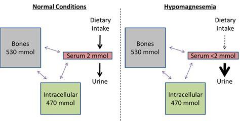 hypomagnesemia symptoms  treatment studycom