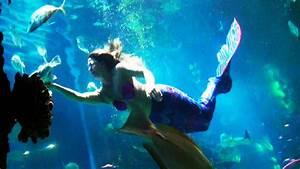 Real Mermaid Caught On Tape